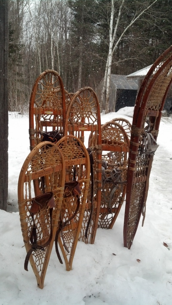 snowshoes at Fernwood