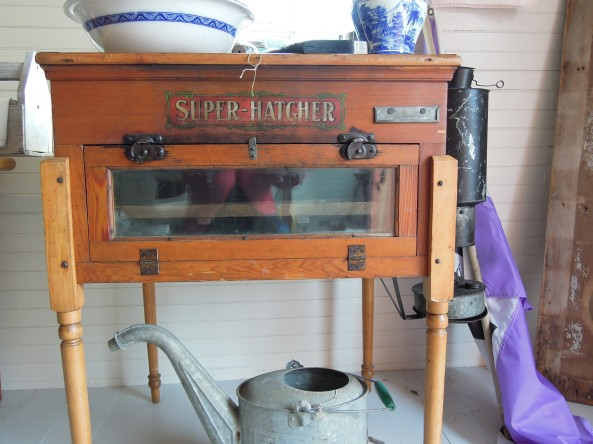 My friend Darcy's kerosene fired incubator from Sears and Roebuck
