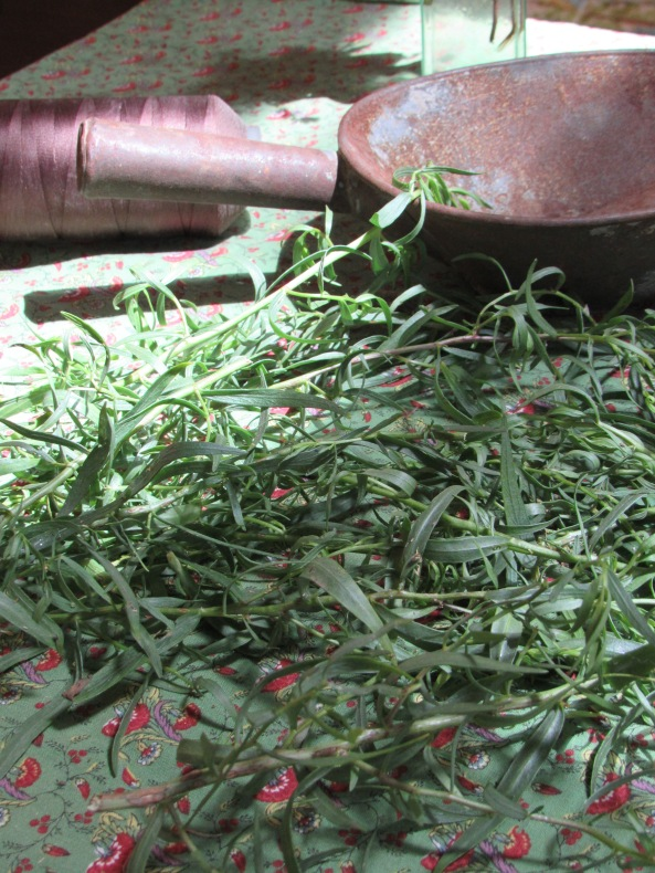 Tarragon....another Fall chore , drying herbs from the garden